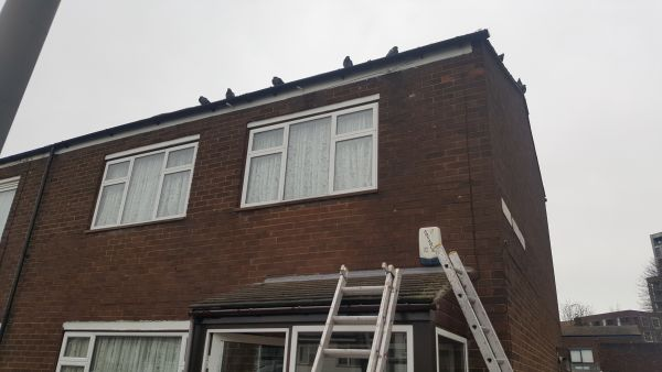 Roofing Maintenace in East Dulwich